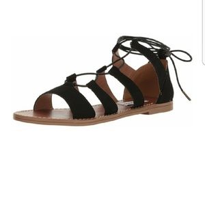 Steve Madden Shoes - Steve Madden Gabriela Gladiator Lace Up Sandals